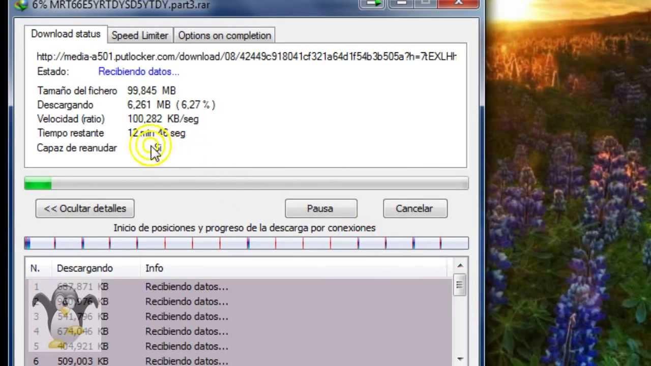 Serial de internet download manager 5. 05.