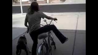 Teaching A Dog To Ride Alongside You While Biking