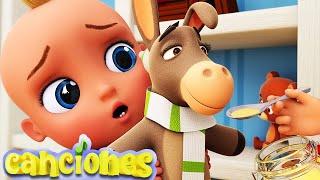 A mi burro le duele la cabeza | Partes del Cuerpo! ♫ Canciones Infantiles ♫ LooLoo