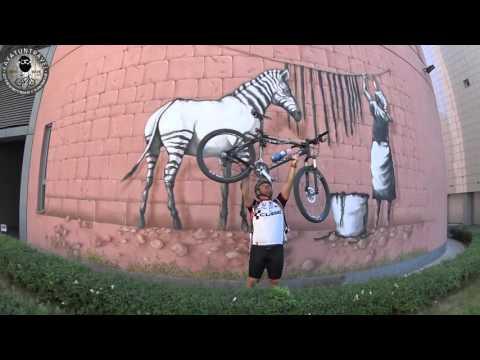 ВелоКвэст. Загадки на велосипеде. VeloQuest. Puzzles on the bike