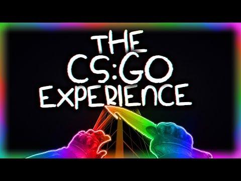 THE CS:GO EXPERIENCE