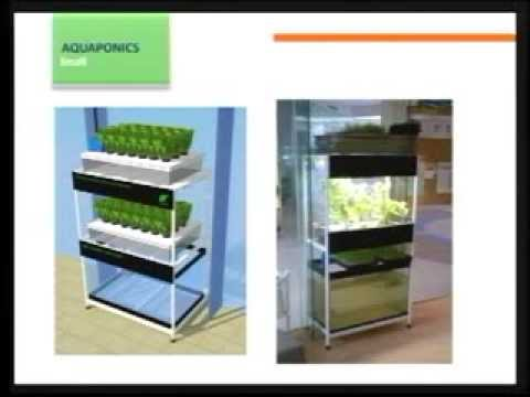 Tabletop Gardening Part 1: SOAPer Trade Show: 1st Philippine Natural and Organic Products Expo
