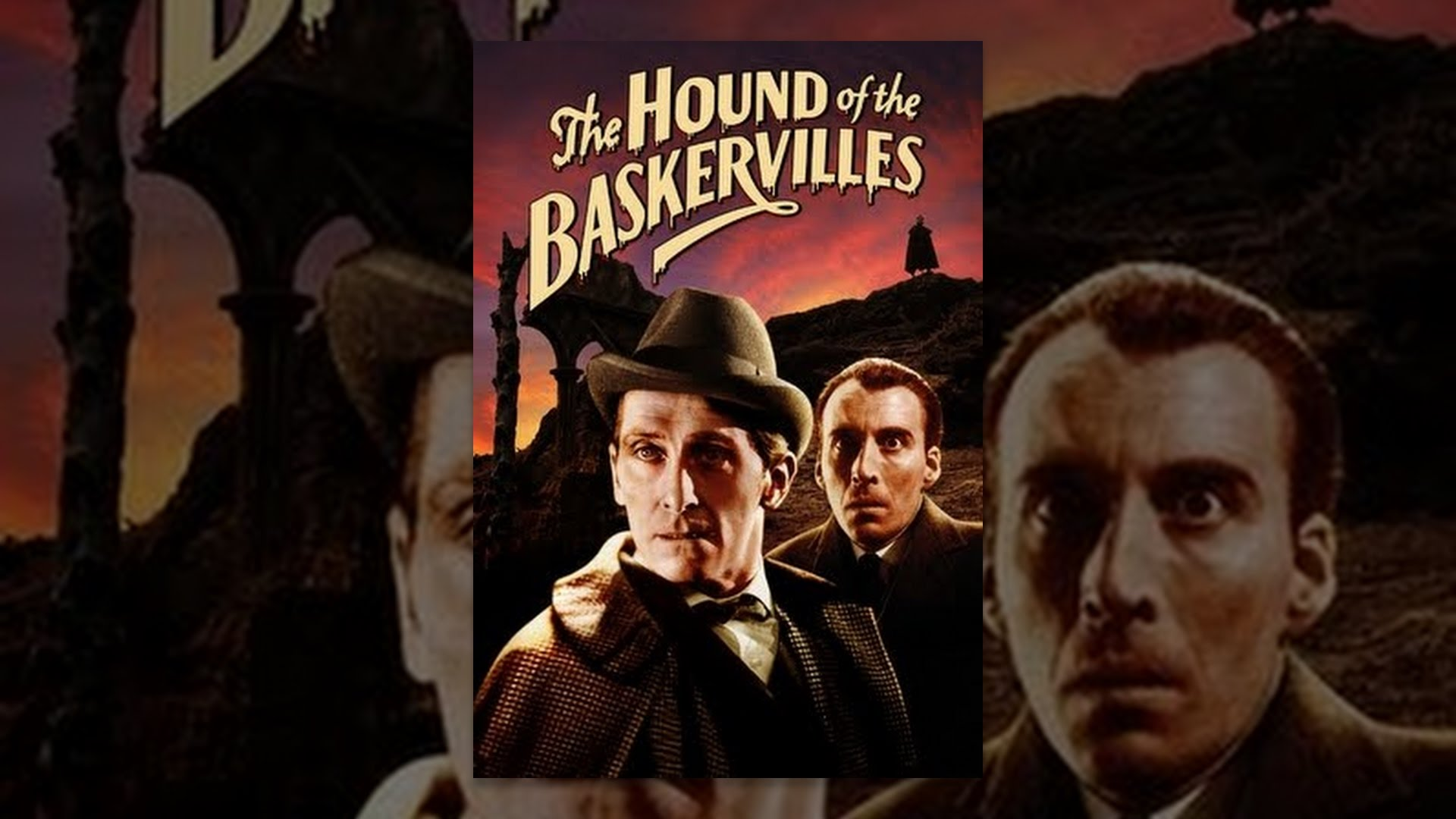 hound of baskervilles The hound of the baskervilles adapted by r hamilton wright and david pichette from the novel by arthur conan doyle, directed by craig hall until oct 27 at the festival theatre,.