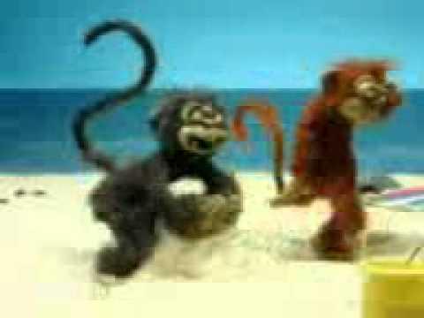 2 Monyet Sange