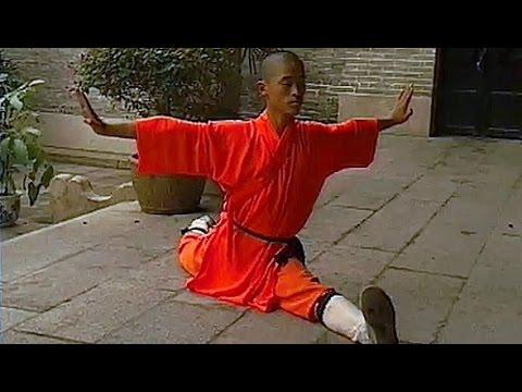 Shaolin kung fu basic training 3