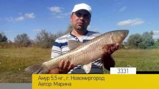 Фотоальбом - Рыбалка №666