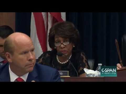 Maxine Waters Won't Let Steve Mnuchin Answer a Question