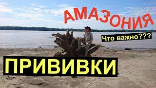 Река Амазонка Икитос город в Перу Здоровье в путешествии Прививки и доверие Что нужно на Амазонке?