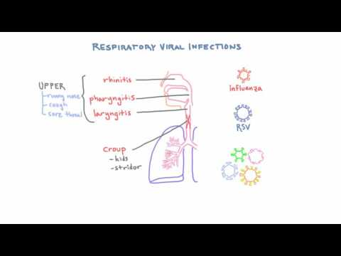 Respiratory Viruses - Clinical Presentations And Diagnosis