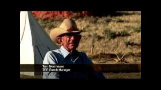 Cowboy Authentic TongueRiver