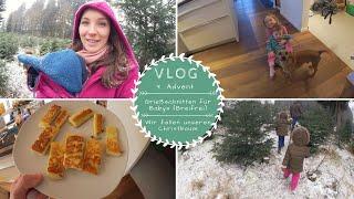 Wir fällen unseren Christbaum |Breifrei bei Babys ohne Zähne |VLOG |Kathis Daily Life