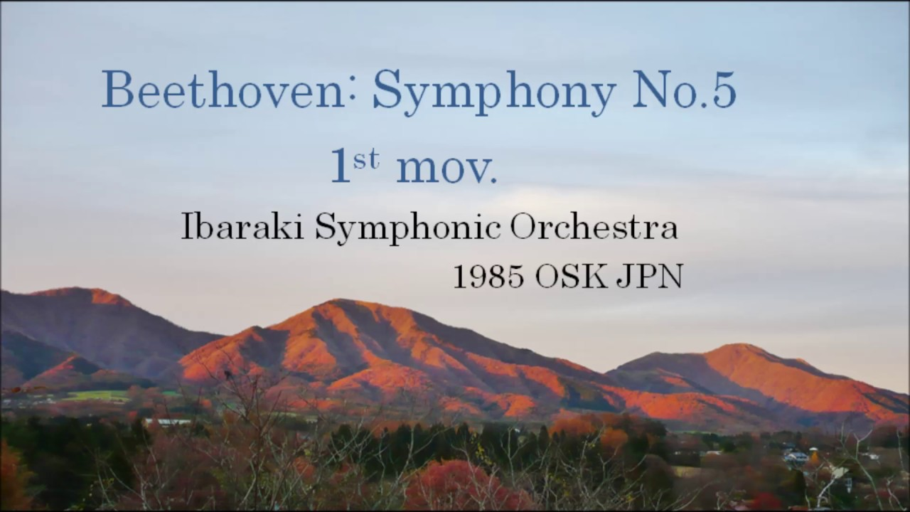 beethoven fifth symphony first movement
