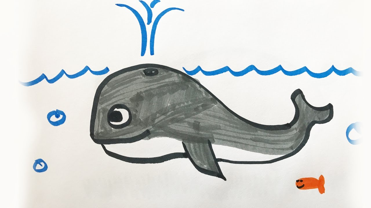 How to draw and color a Whale -for kids! - YouTube