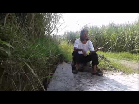 Campursari - Voc.Kangto (Sugih Tanpo Bondho)