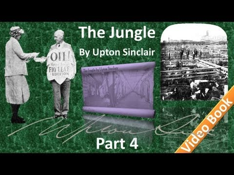 Part 4 - The Jungle Audiobook by Upton Sinclair (Chs 13-17) thumbnail