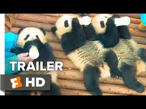 Pandas Trailer #1 (2018)   Movieclips Indie Mp3