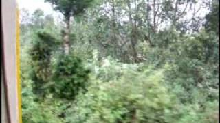 Riding the Nilgiri Mountain Narrow Gauge Railway part I