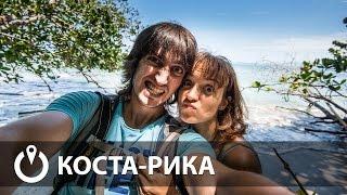 В погоне за ленивцами. Коста-Рика #1 | Provolod & Leeloo