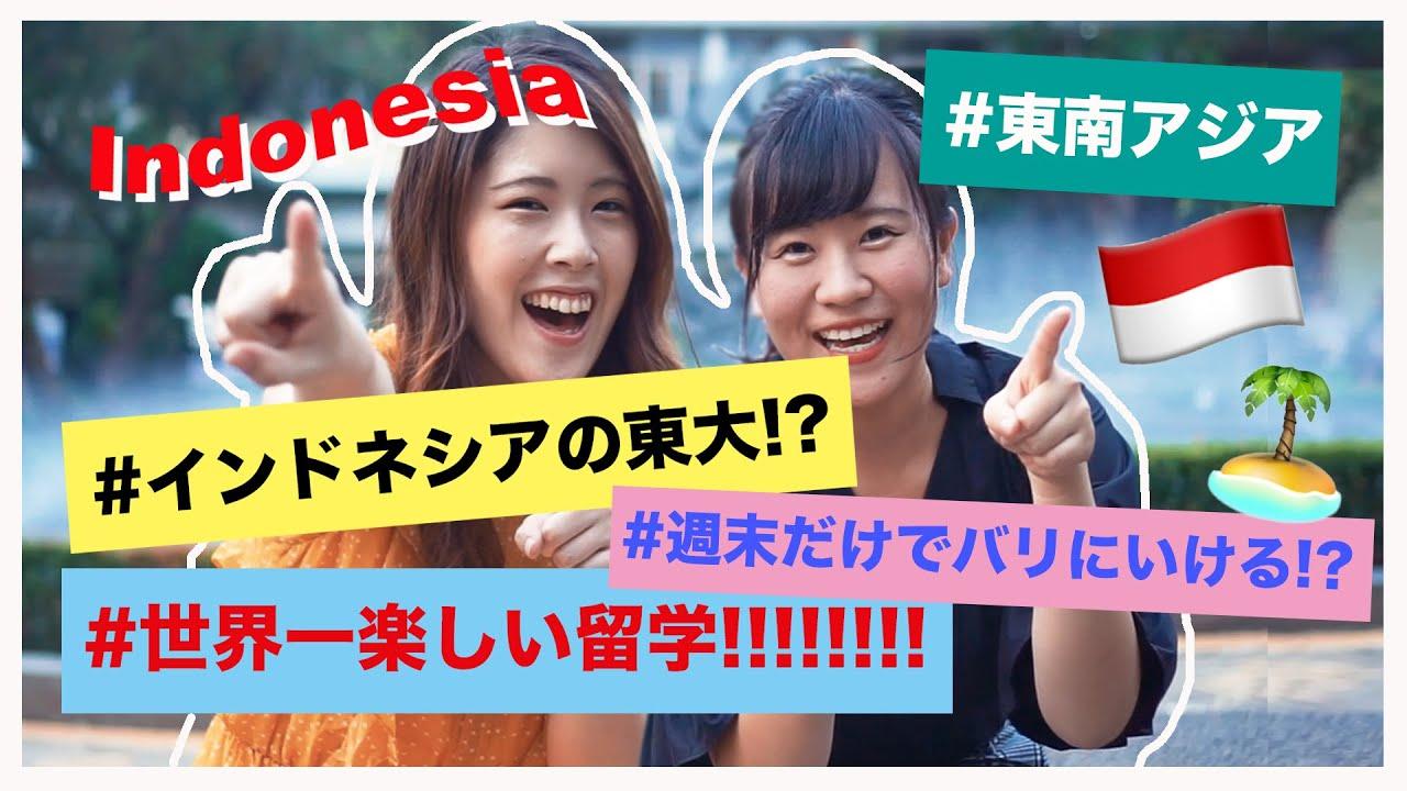 【インドネシア留学】あなたの留学先の選択肢が増えるかも!?#ちか友留学生活2019