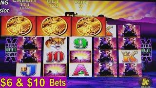 Buffalo Slot Machine Bonus ★BIG WIN★ and ★BUFFALO HUGE LINE★! Live Aristocrat Slot Play w/Big Win