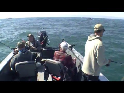 Brookings Lingcod Fishing with Brookings Fishing Charters