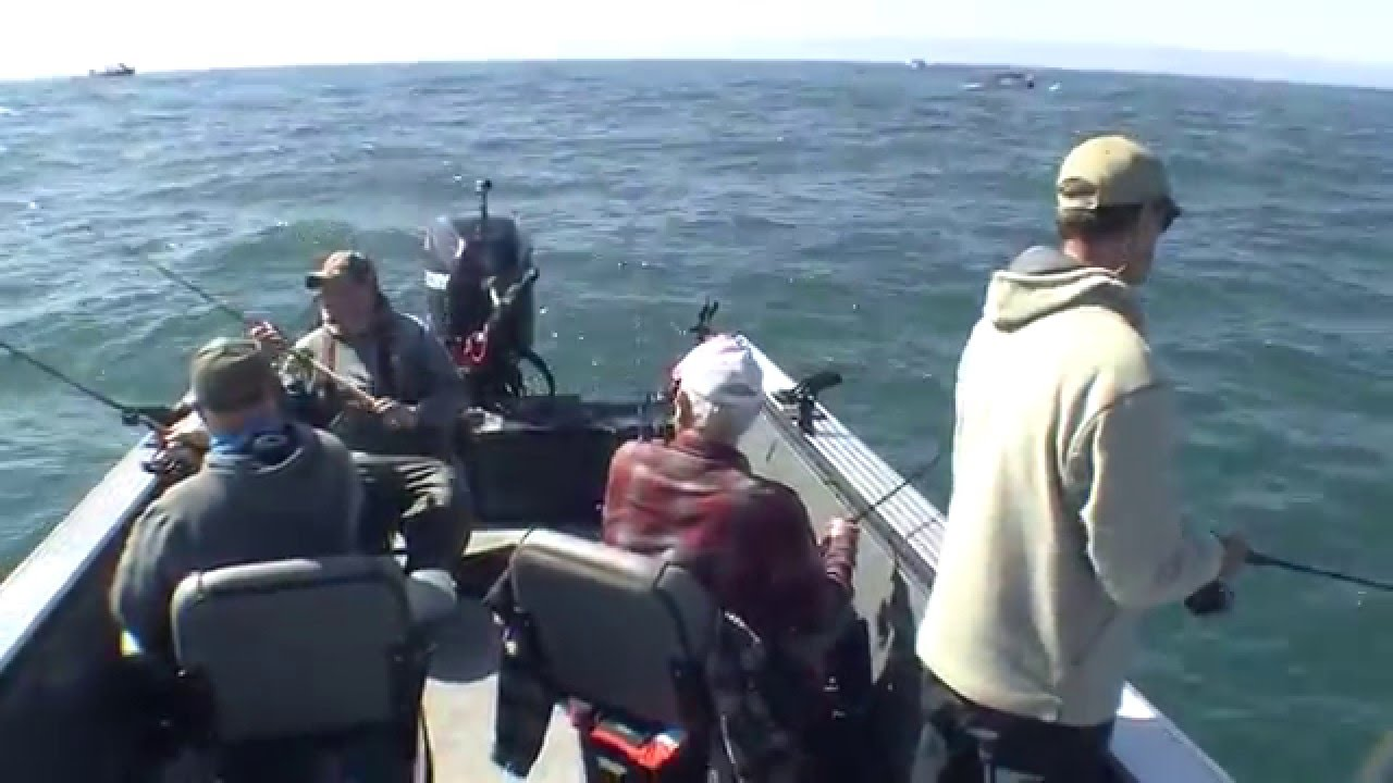 Brookings lingcod fishing with brookings fishing charters for Fishing brookings oregon