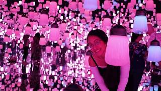 TEAMLAB BORDERLESS MUSEUM   THINGS TO DO IN JAPAN WITH A TODDLER/KIDS  TOKYO