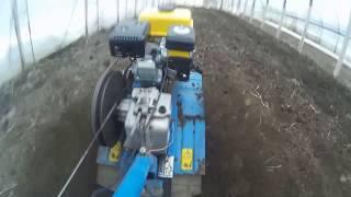 Подготовка почвы в теплице под посев редиса