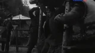 Бандеровцы в фильме