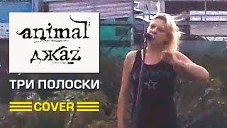ДЕВУШКА КРАСИВО СПЕЛА ПЕСНЮ ТРИ ПОЛОСКИ ANIMAL ДЖАZ