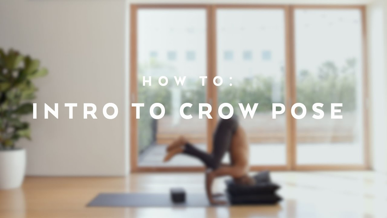 Crow Pose Alo Yoga