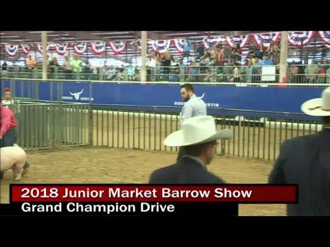 2018 Junior Market Barrow Show- Day 2