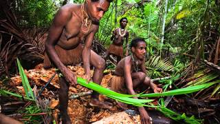 The Korowai Tribe  People who eat human Flesh