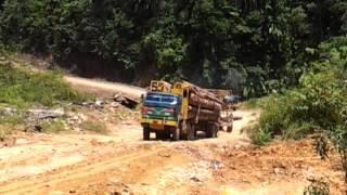 Sabah logging truck