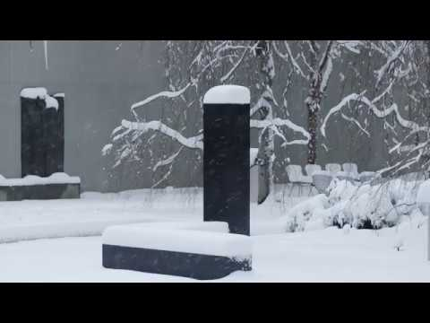 Winter in the Sculpture Garden | AT THE MUSEUM