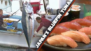 Download Bluefin Tuna (Maguro) Story | Sea to Sushi Shop ★ ONLY in JAPAN Mp3 and Videos