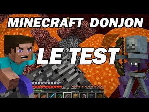 Minecraft survie :