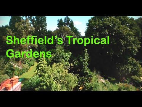 sheffields banana palm trees and bamboos tropical gardens gardeners world 2016 - Tropical Garden 2016