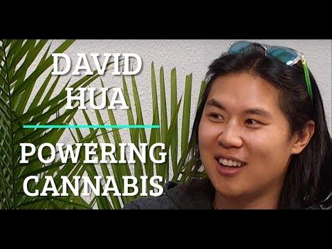 Powering Cannabis - David Hua