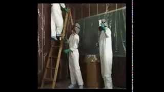 Who Needs Asbestos Awareness Training?