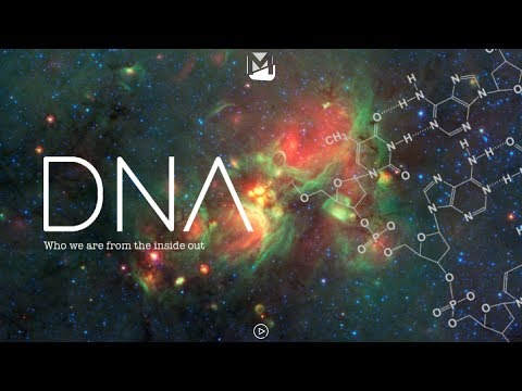 MOVE Students - DNA