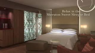 Hotels in Zurich   Sheraton Zurich Hotel   Honest Hotel Review