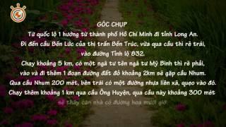 Con đường hoa mười giờ - Long An
