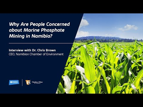 Why Are People Concerned about Marine Phosphate Mining in Namibia?