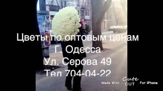 видео Купить радужные розы с доставкой по Москве недорого.
