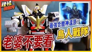 價值4000元! /史上第一支不要臉的機器人? | 老婆不要看   鳥人戰隊 Jet icarus garuda Great 噴射伊卡洛斯 迦樓羅 super sentai jetman