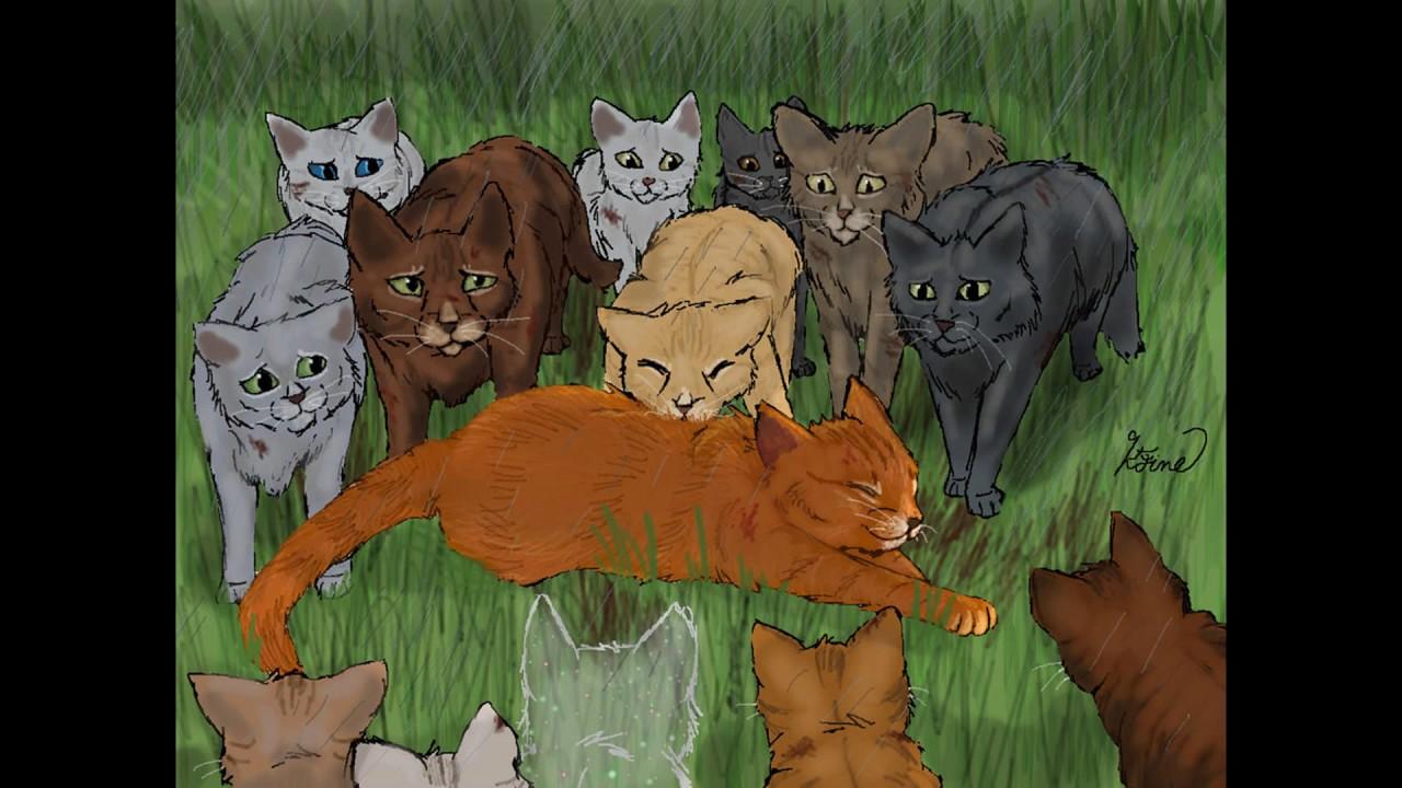 Открытка букет из котов воителей