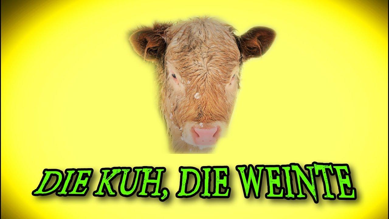 Die Kuh die weinte, Buddhistische Geschichten über den Weg