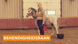Behendigheidsbaan met Cookie Dough | PaardenpraatTV
