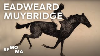 Slices of time: Eadweard Muybridge's cinematic legacy | Pioneers of Photography